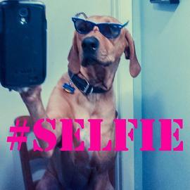 E' selfie mania! Un 'epidemia che contagia tutti