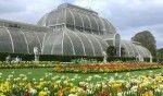 giardini botanici reali kew gardens.1