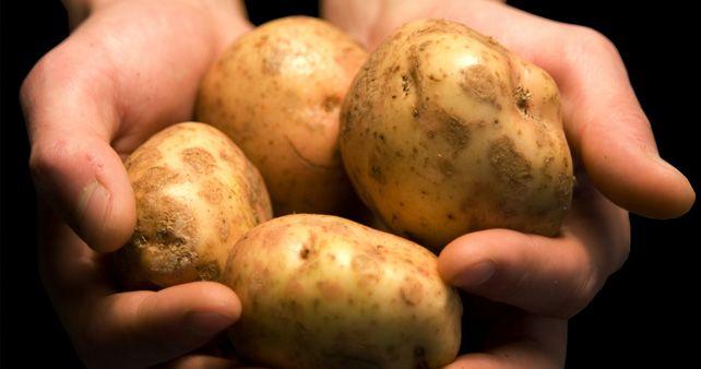 Le patate: proprietà nutrizionali e benessere per l'organismo