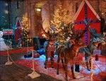 Le renne a Casa di Babbo Natale