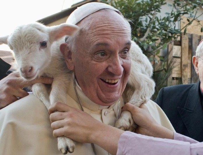 Papa Francesco e animali