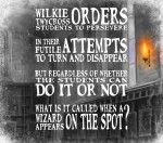 Harry Potter Pottermore indovinello 7° giorno