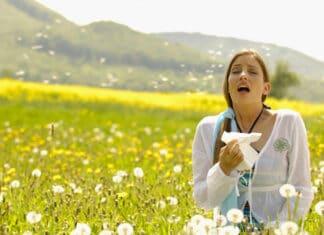 Allergie stagionali: antistaminici naturali.