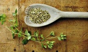 antiossidanti e origano