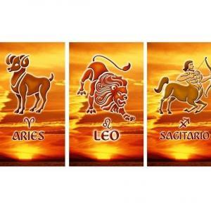 caratteristiche dei segni di fuoco: Leone