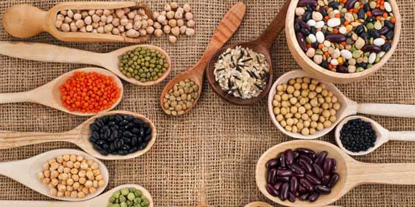 proteine dieta vegetariana vegana