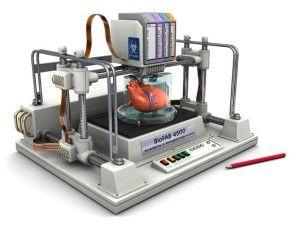 Stampante 3D per creare organi umani