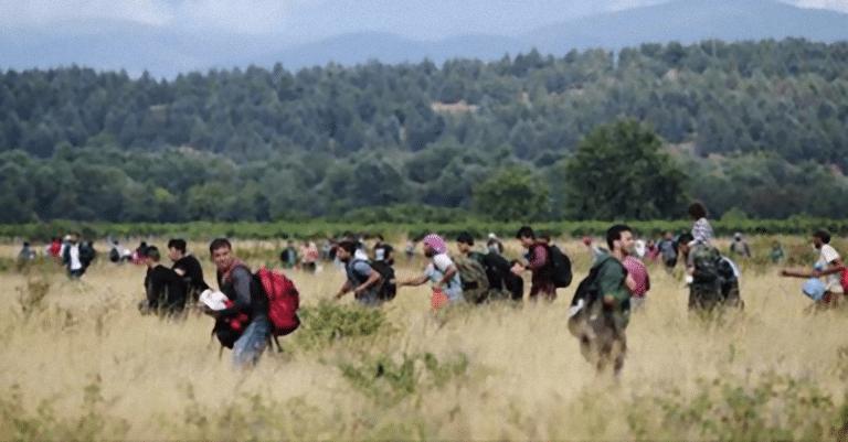 Bosnia, migranti in marcia verso l'Italia: 'Vogliamo andare a Milano a…'