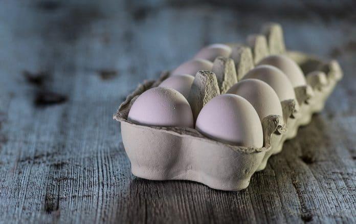 Uova ritiro causa salmonella
