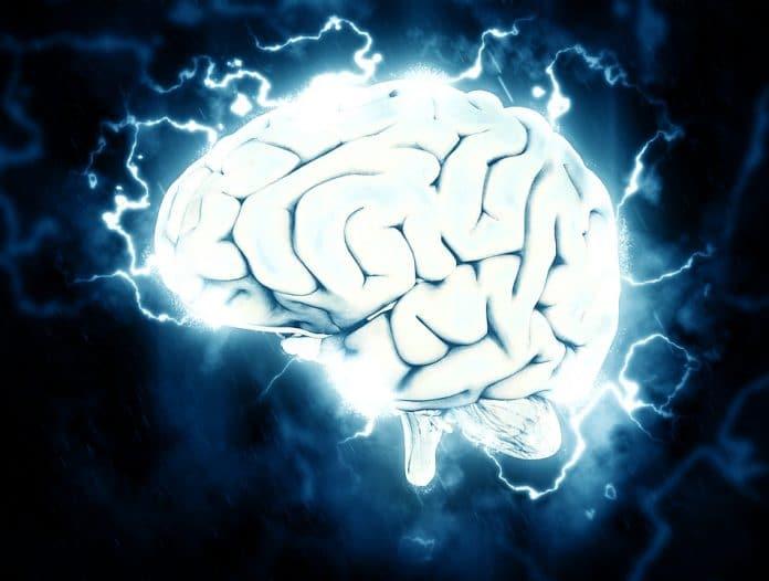 cervello stress