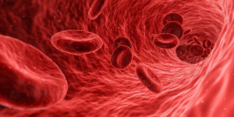 Colesterolo, 6 alimenti per abbassarlo in modo naturale