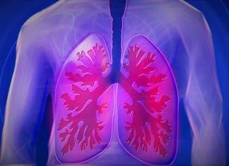 Polmone colpo di tosse