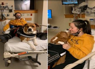 Ragazza affetta da malattia rara salvata dal suo cane
