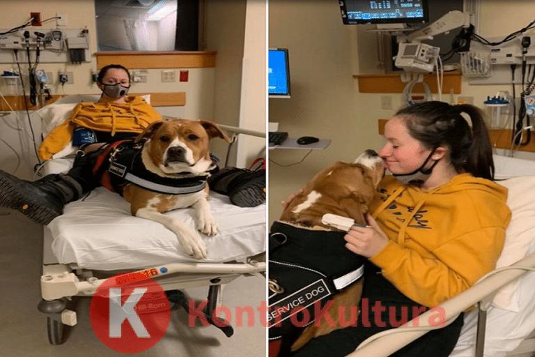 Martina, la sua storia: un forte odore potrebbe ucciderla: il cane le salva la vita