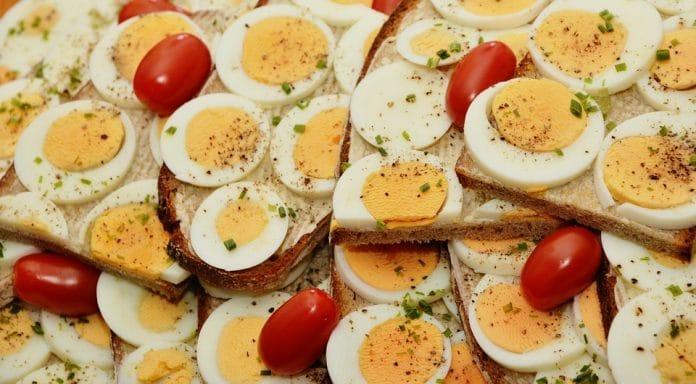 Colazione proteica alimenti consigliati