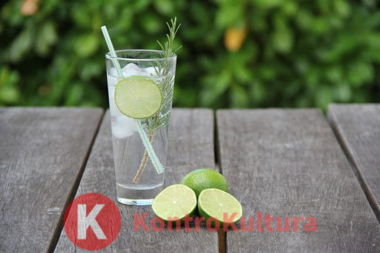 Bere gin tonic, un aiuto per la dieta: i risultati sorprendenti di uno studio