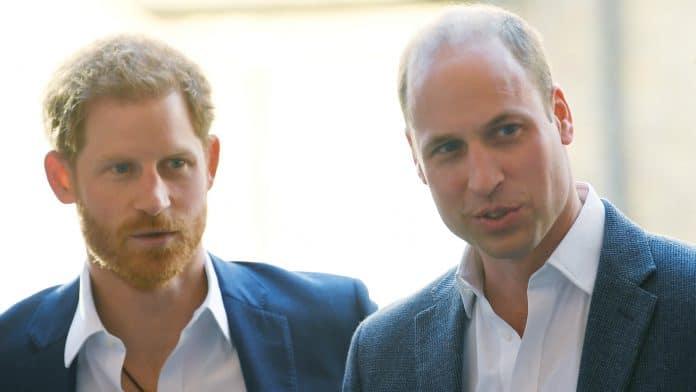 Harry e William discutono