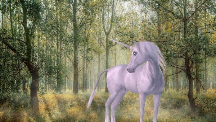 Carne di unicorno in vendita