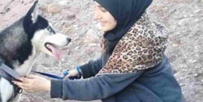 Cane viene sparato e ucciso