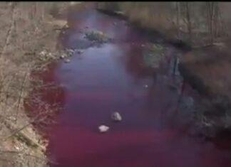Torrente rosso sangue