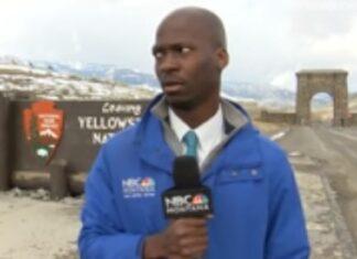 Reporter assalito da bisonti