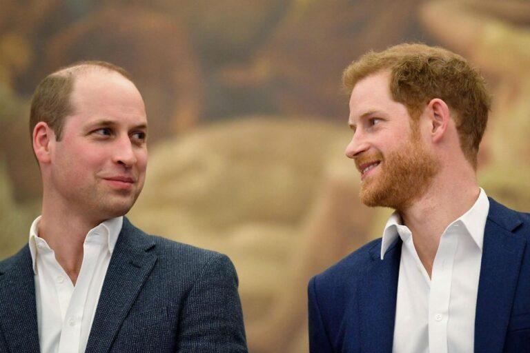 William e Harry retroscena choc ora la Royal family trema davvero