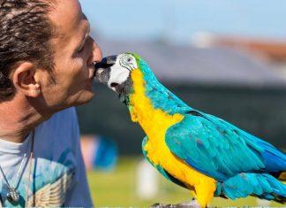 Enzo Salvi e il suo pappagallo
