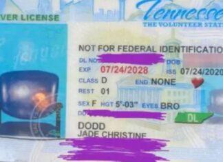 Foto della patente senza volto