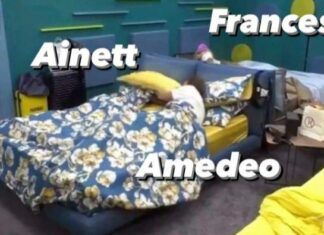Amedeo e Ainett